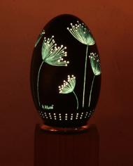 fleurs-des-champs-oeuf-eclaire-4