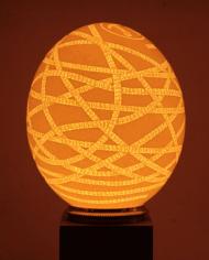 lampe-pi-oeuf-autruche-1