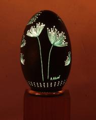 fleurs-des-champs-oeuf-eclaire-1